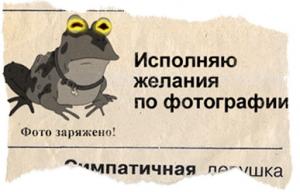 i1d876815zjp